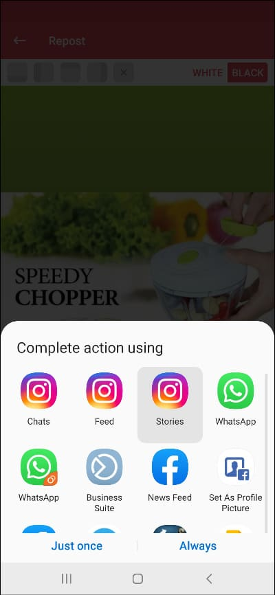 download instagram story with username